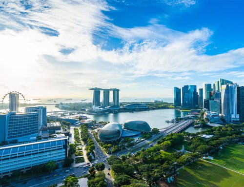 Who Reviews Company Registration in Singapore?